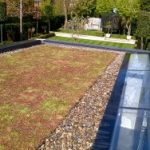 PVC Green Roofing